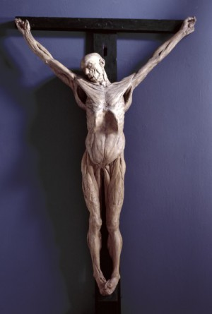 Анатомически правильное изображение распятия Христа